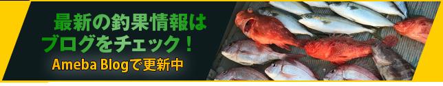 最新の釣果情報はブログをチェック!Ameba Blogで更新中
